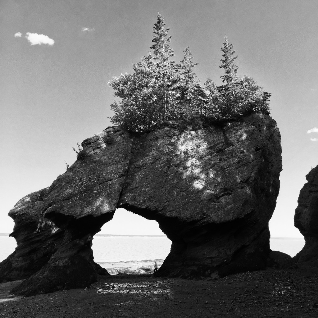 Low Tide at Hopewell Rocks - Bay of Fundy