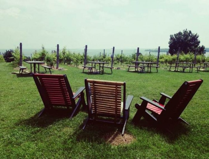 the top five vineyards in prince edward county